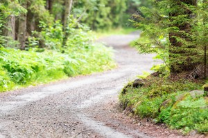 21571577-winding-country-gravel-road-in-forest-stock-photo.jpg